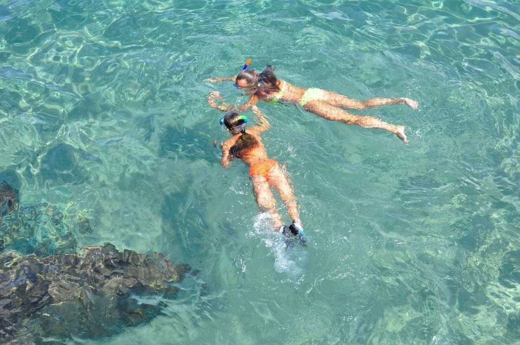 Discover Tropical Underwater Beauty by Learning to Snorkel